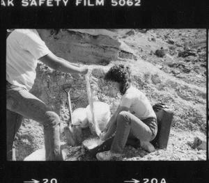 Jim and India plastering allosaurus bones, 1982