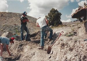 Jackhammers, pneumatic hammers, and probes