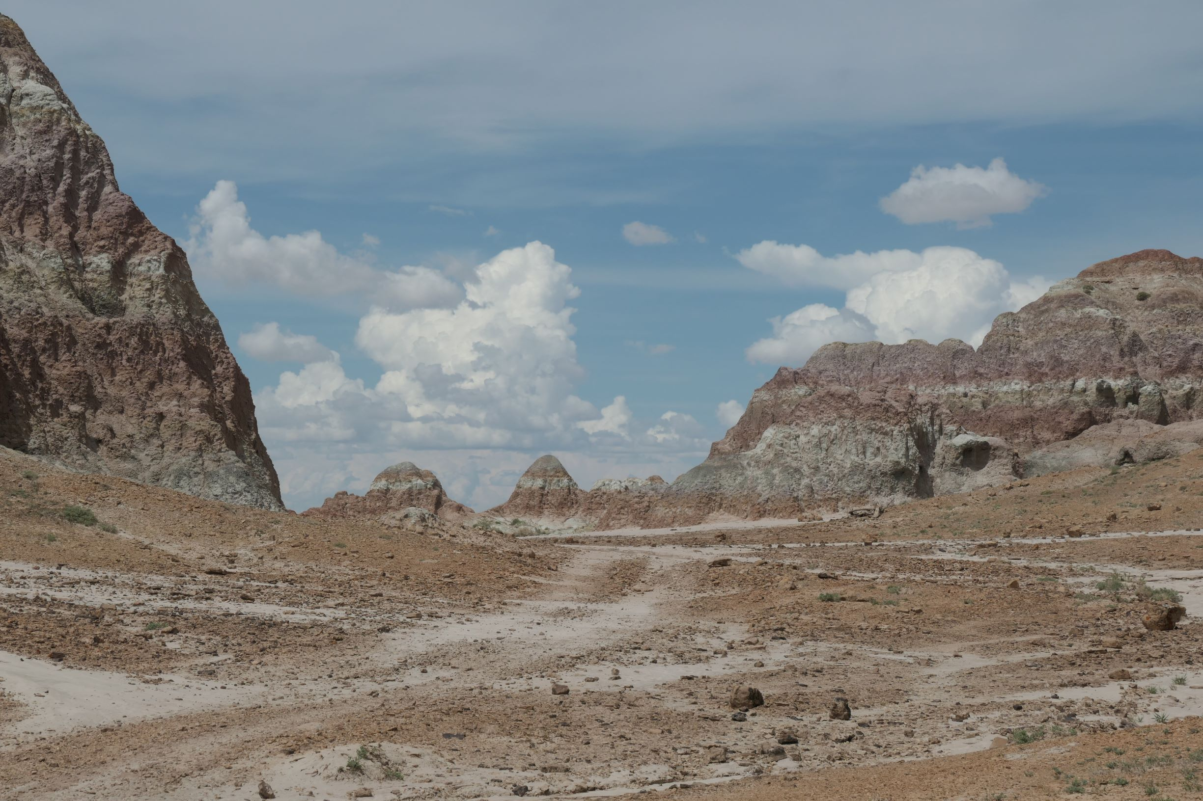 Eocene sediment dreams