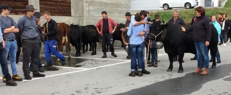 Farmers congratulate the 2019 queen cow and owner, Törbel
