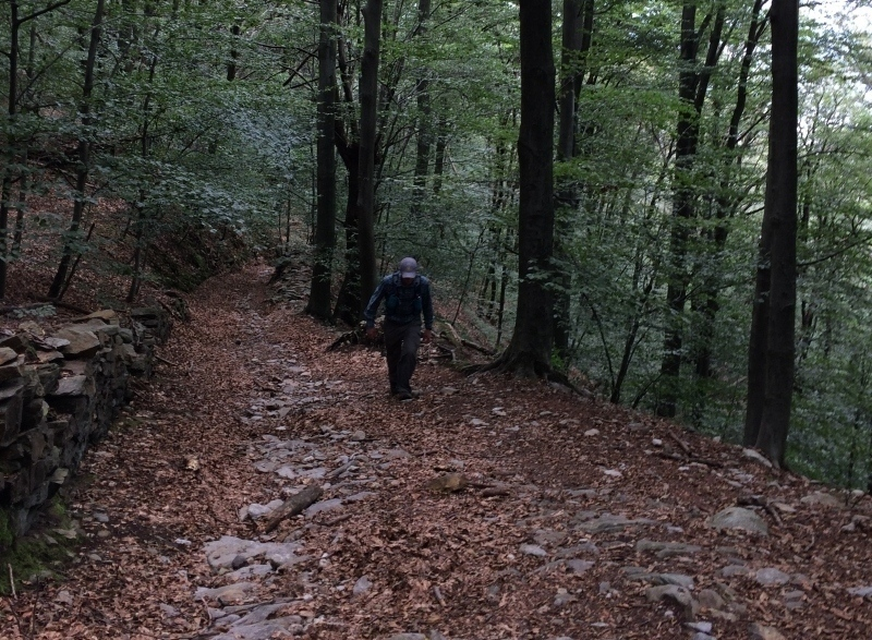 Paul hiking an ancient road of set cobbles, with beech trees crowding in, Stresa, Italy